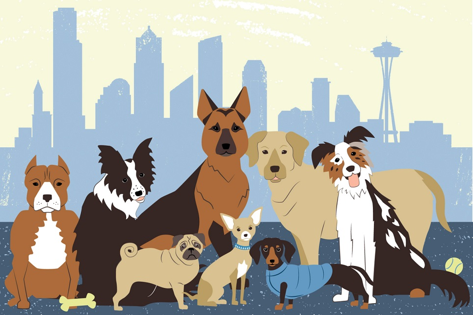 Seattle with pets